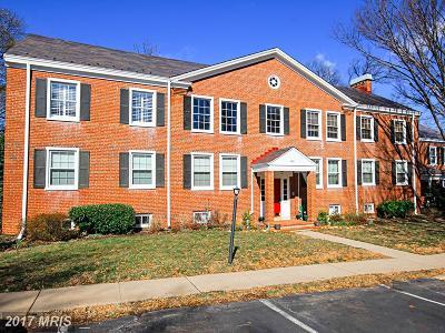 Arlington Condo For Sale: 2931 Columbus S #B1