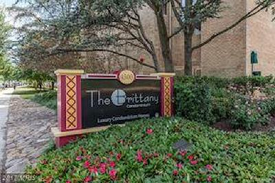 Arlington Condo For Sale: 4500 Four Mile Run Drive #201