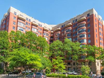Arlington Rental For Rent: 2400 Clarendon Boulevard #304