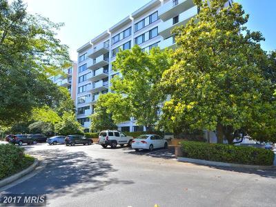 Arlington Condo For Sale: 4501 Arlington Boulevard #529