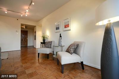 Arlington Rental For Rent: 1530 Key Boulevard #324