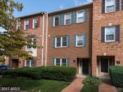 Arlington Rental For Rent: 1173 Vernon Street