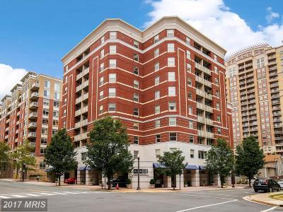 Arlington Condo For Sale: 880 Pollard Street N #1007