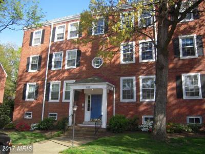 Arlington Rental For Rent: 4860 28th Street S #B1