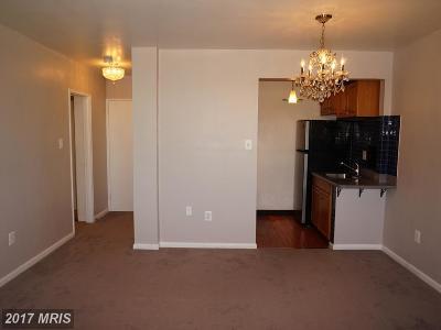 Arlington Rental For Rent: 1830 Columbia Pike #509