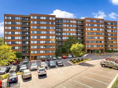 Arlington Condo For Sale: 4390 Lorcom Lane #509