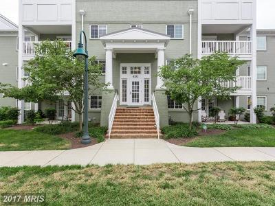 Arlington Condo For Sale: 4191 Four Mile Run Drive #404