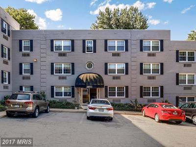 Arlington Condo For Sale: 2053 Woodstock Street N #102