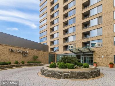 Arlington Condo For Sale: 2001 15th Street N #216
