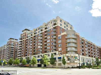 Arlington Condo For Sale: 3650 Glebe Road S #466