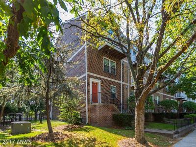 Arlington Townhouse For Sale: 3074 Glebe Road