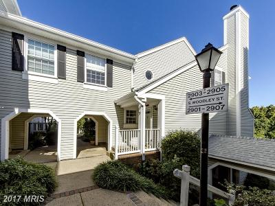 Arlington Condo For Sale: 2903 Woodley Street #5