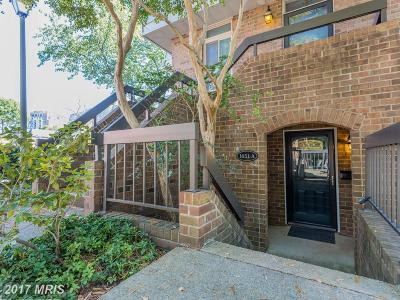 Arlington Townhouse For Sale: 1651 Hayes Street S #1