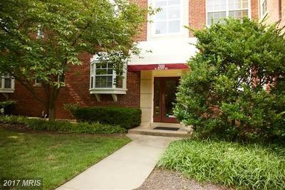 Arlington Condo For Sale: 2111 Scott Street #58