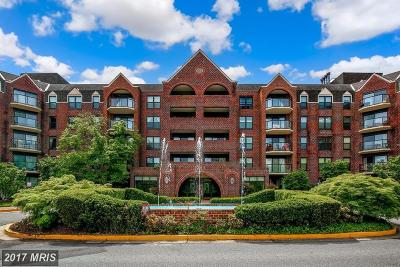 Arlington Condo For Sale: 2100 Lee Highway #335