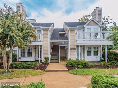 Arlington Condo For Sale: 4533 28th Road S #9-11
