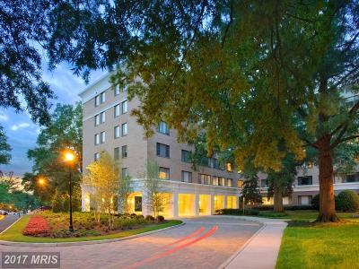 Arlington Condo For Sale: 2321 25th Street S #2-313