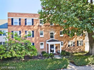 Arlington Condo For Sale: 2902 13th Street S #2201