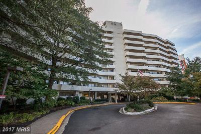 Arlington Condo For Sale: 5300 Columbia Pike #113