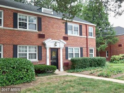 Arlington Rental For Rent: 4326 Pershing Drive N #4