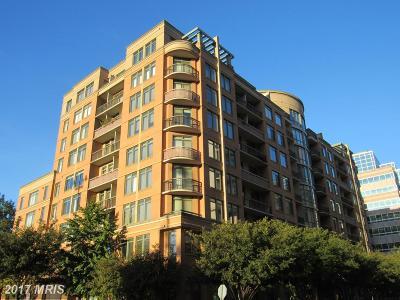 Arlington Condo For Sale: 3625 10th Street N #803