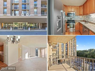 Arlington Condo For Sale: 4600 Four Mile Run Drive #318