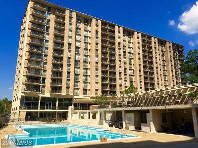 Arlington Rental For Rent: 4600 Four Mile Run Drive #914