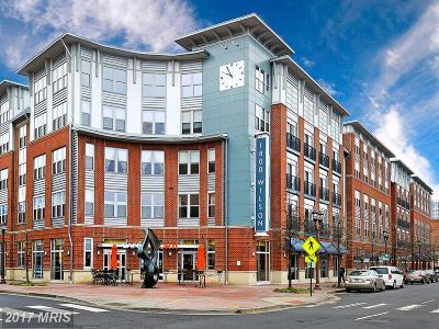 Arlington Rental For Rent: 1800 Wilson Boulevard #306