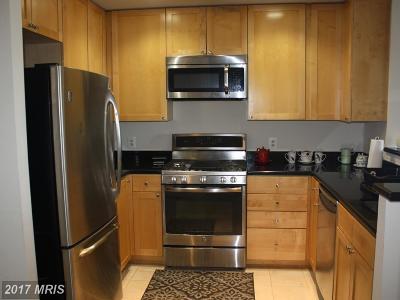 Arlington Condo For Sale: 3600 Glebe Road S #504W