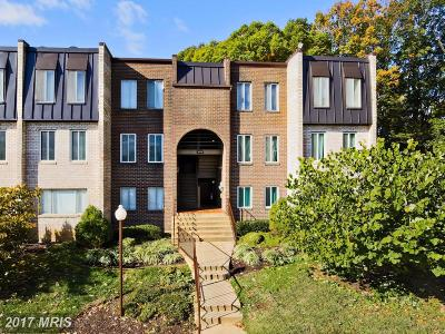 Arlington Condo For Sale: 5075 7th Road S #T2