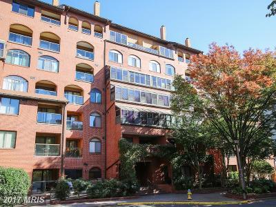 Arlington Condo For Sale: 1029 Stuart Street #216