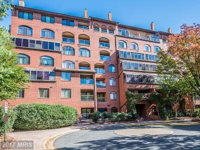 Arlington Condo For Sale: 1029 Stuart Street N #505