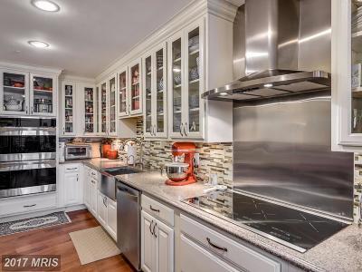 Arlington Condo For Sale: 1300 Crystal Drive #1710S