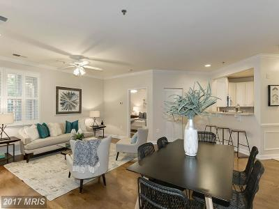 Arlington Condo For Sale: 2330 14th Street N #102