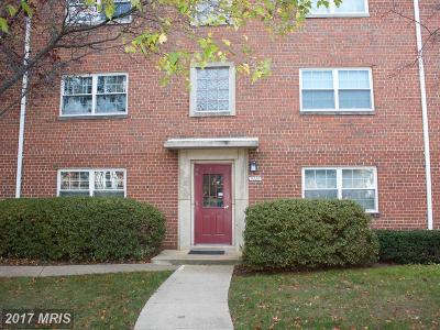 Arlington Condo For Sale: 5228 8th Road S #5