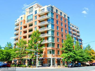 Arlington Condo For Sale: 1000 Randolph Street N #208