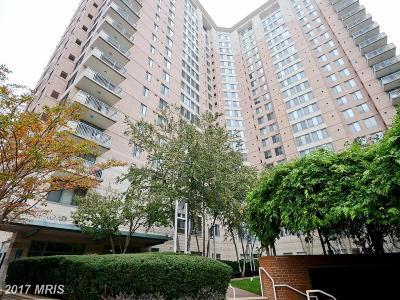 Arlington Rental For Rent: 851 Glebe Road #1714