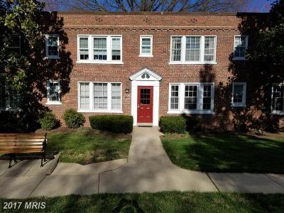Arlington Condo For Sale: 1735 Troy Street N #8-413