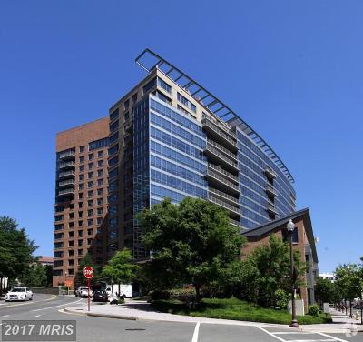 Arlington Rental For Rent: 2001 15th Street N #317