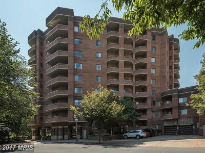 Arlington Condo For Sale: 1050 Stuart Street #617