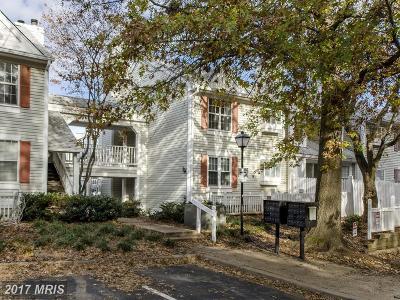 Arlington Single Family Home For Sale: 2925 Woodstock Street #7