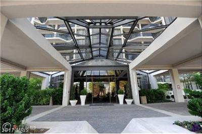 Arlington Rental For Rent: 1530 Key Boulevard #603
