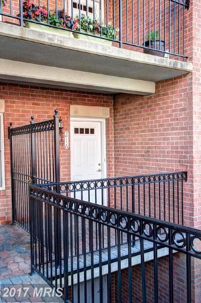 Arlington Rental For Rent: 6924 Fairfax Drive #216