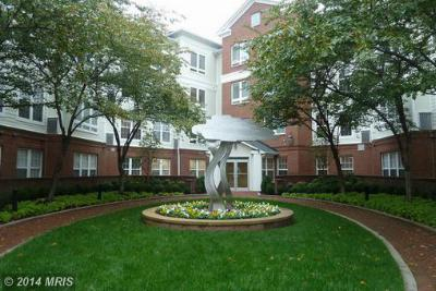 Condo/Townhouse Sold: 801 Greenbrier Street #306