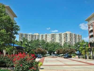 Arlington Condo For Sale: 1101 Arlington Ridge Road #204