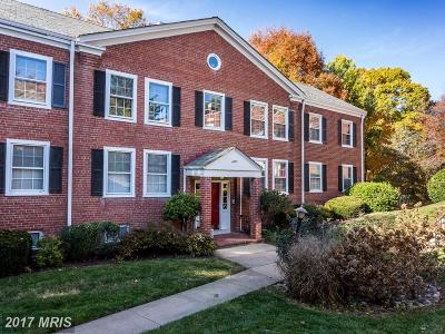Fairlington Village, Fairlington Villages, Fairlington Vil Rental For Rent: 4855 28th Street S #A2