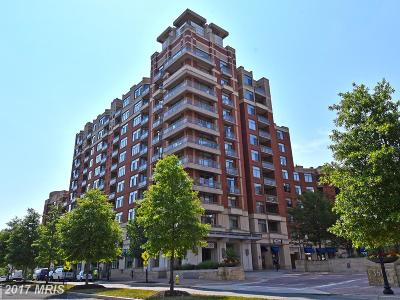 Arlington Condo For Sale: 3650 Glebe Road #644