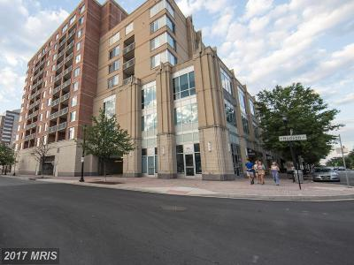 Arlington Condo For Sale: 1020 Highland Street #617