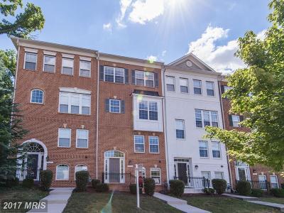 Arlington Townhouse For Sale: 969 Randolph Street S