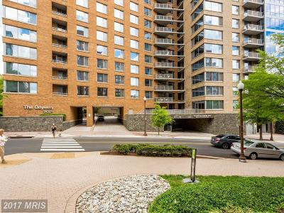 Arlington Condo For Sale: 2001 15th Street N #205